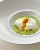 Herb foam soup with poached egg