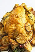 Roast chicken with lemon slices and rosemary