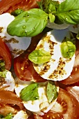 Tomatoes and mozzarella with basil and balsamic dressing