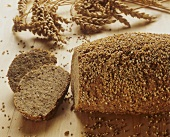 Wholemeal wheat bread with sesame crust, ears of wheat behind