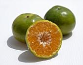 Thai oranges (for juicing)