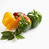 Four peppers