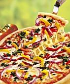 Mediterranean vegetable pizza, one slice on pizza server