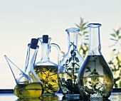 Various herb oils