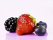 Brombeere, Erdbeere und Heidelbeeren