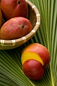 Mangos in basket and on palm leaf