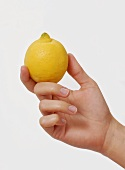 Hand hält eine Zitrone