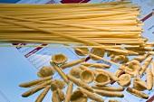 Various types of pasta (Spaghetti, orecchiette, garganelli)