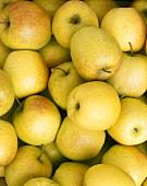 Golden Delicious apples (full-frame)