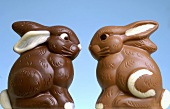 Two chocolate Easter Bunnies