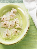 Hyacinth flowers in lime green dish in bathroom