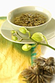 Green tea with tea flower