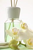 Fragrance diffuser with aroma sticks and orchid