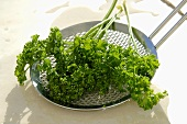 Curly parsley on a skimmer