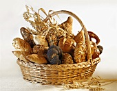 Assorted bread rolls, breads & cereal ears in bread basket