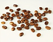 Coffee beans on a white surface