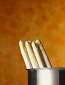 White asparagus in a pot