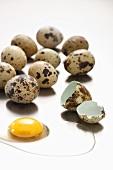 Mehrere Wachteleier, ein Ei aufgeschlagen