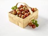 Gooseberries in a wooden basket