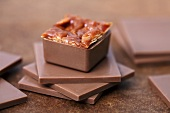 Caramel praline on squares of chocolate