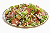 Salad with Romaine, Salami, Cheese and Croutons; White Background