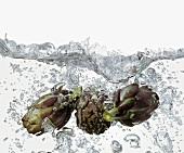 Artischocken in kochendem Wasser