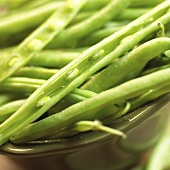 Bowl of Green Beans; Close Up