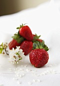 Strawberries with spring flowers on a white surface