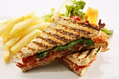 Toasted cheese and tomato sandwich with chips and a salad