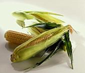 Several corncobs