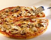 Pizza funghi (Pizza mit Champignons), Toskana, Italien
