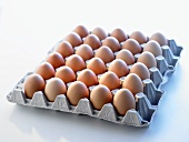 Brown eggs in an egg tray