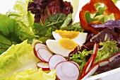 Healthy mixed salad