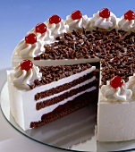 Frozen cake (Black Forest cherry cake)