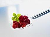 Several raspberries on a plastic spoon