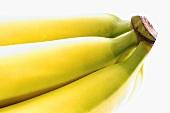 Bunch of bananas, close-up