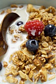 Crunchy muesli with berries and milk