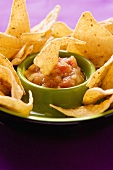 Tortilla chip dipped in tomato salsa