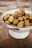 Potatoes in an enamel colander