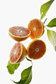 Halved blood oranges, variety 'Tarocco', with leaves