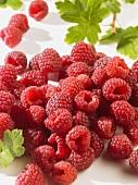A heap of raspberries