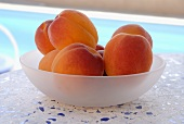 Apricots in a bowl by a pool