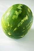 Eine Wassermelone