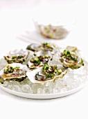 Marinierte Austern mit roten Zwiebeln & Minze