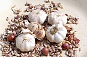 Garlic bulbs and cloves in a heap