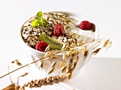 Muesli with yoghurt and fresh fruit