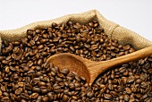 Coffee beans and wooden spoon in a jute sack
