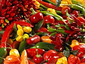 Assorted chillies