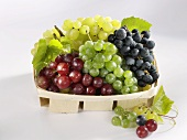 Four types of grapes in a punnet