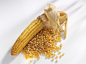 Cob of corn and corn kernels